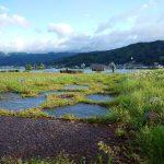 「諏訪湖で朝活。太極拳」2018年4回目を行いました