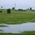 「諏訪湖で朝活。太極拳」2020年7回目は雨で中止でした