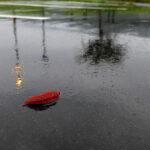 「諏訪湖で朝活。太極拳」2021年11回目は雨で中止でした